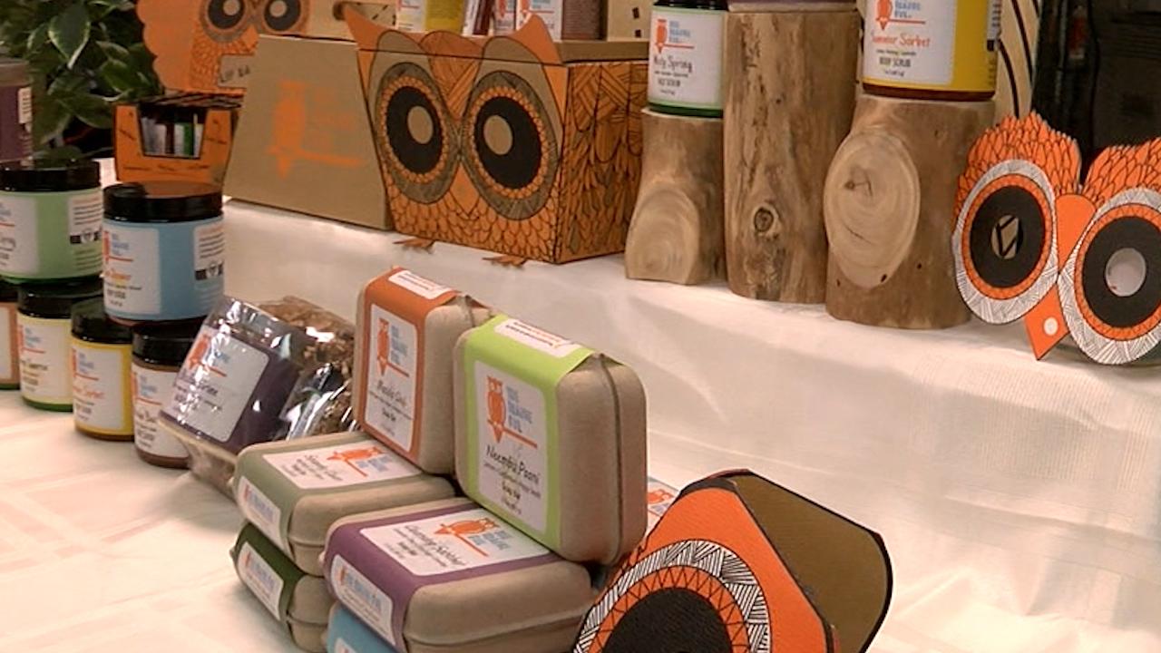 orange owl 2_1460646729255.jpg