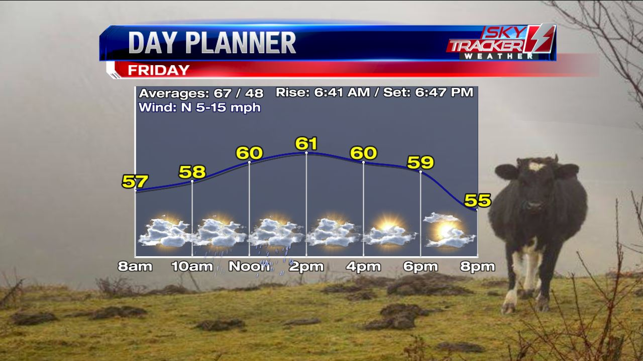 Cool and Cloudy Friday