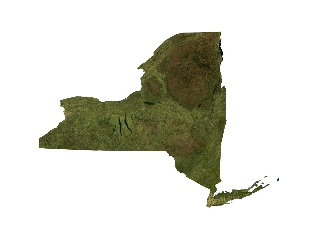 NY_1496349501676.jpg