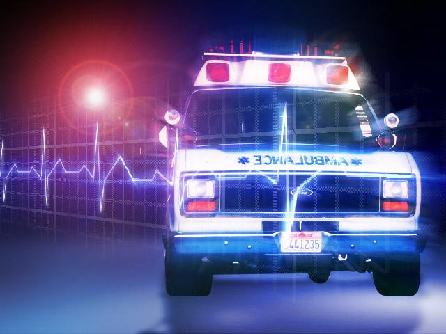 Elderly man found dead in Grafton is believed to have frozen to death