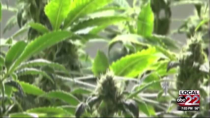 Vermonters React to Marijuana Bill Passage_26113475