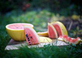 Melon-Small_1531139842533.jpg