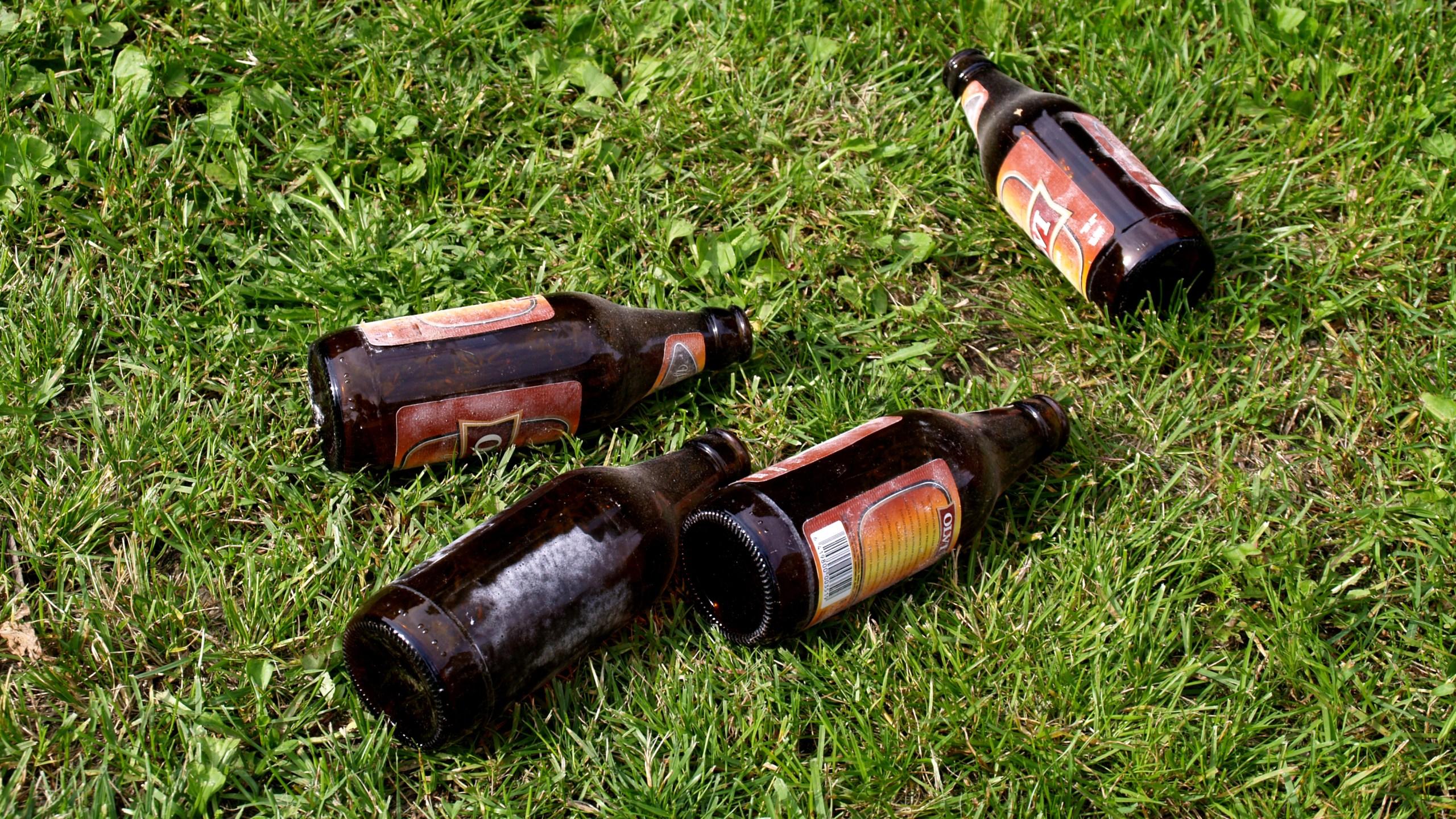 Empty beer bottles on grass_1547571822268