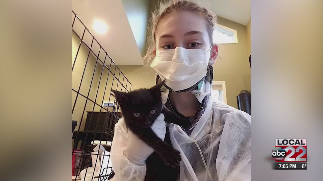 Make-A-Wish helps Vermont teen's kittens-in-space dream come true