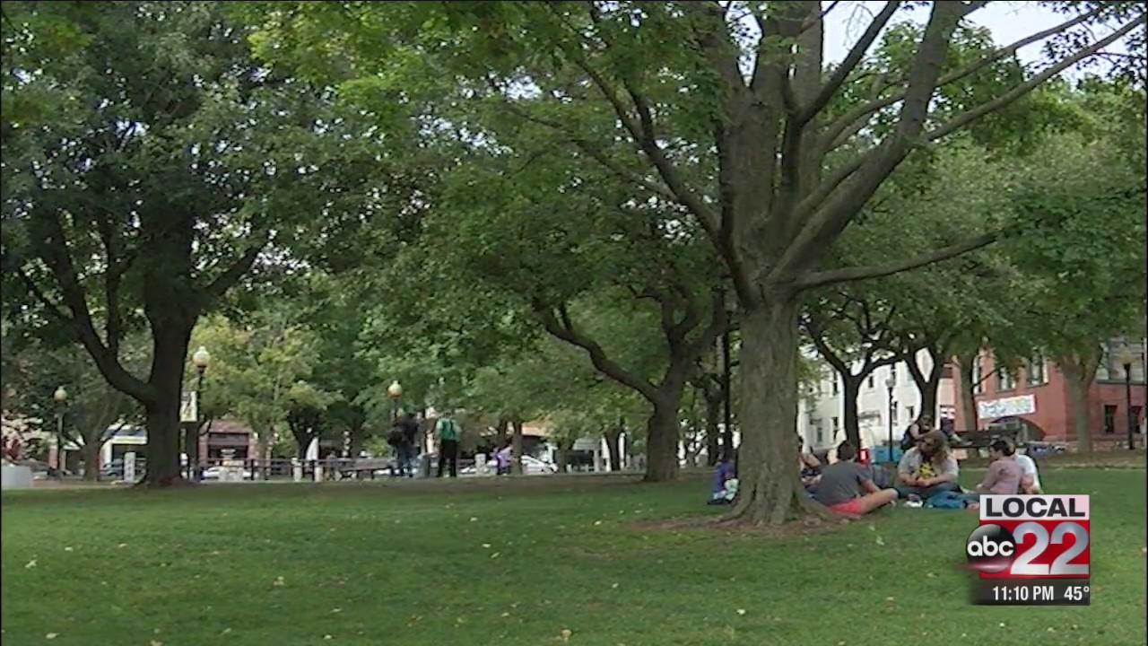 Burlington's City Hall Park renovation will also address soil contamination