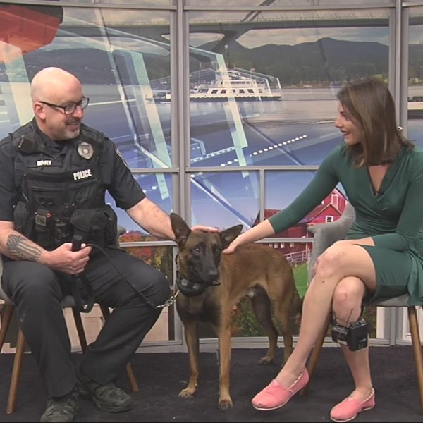 K9 Ozzy and Cpl. Dewey liven up the Local 44 Morning Brew