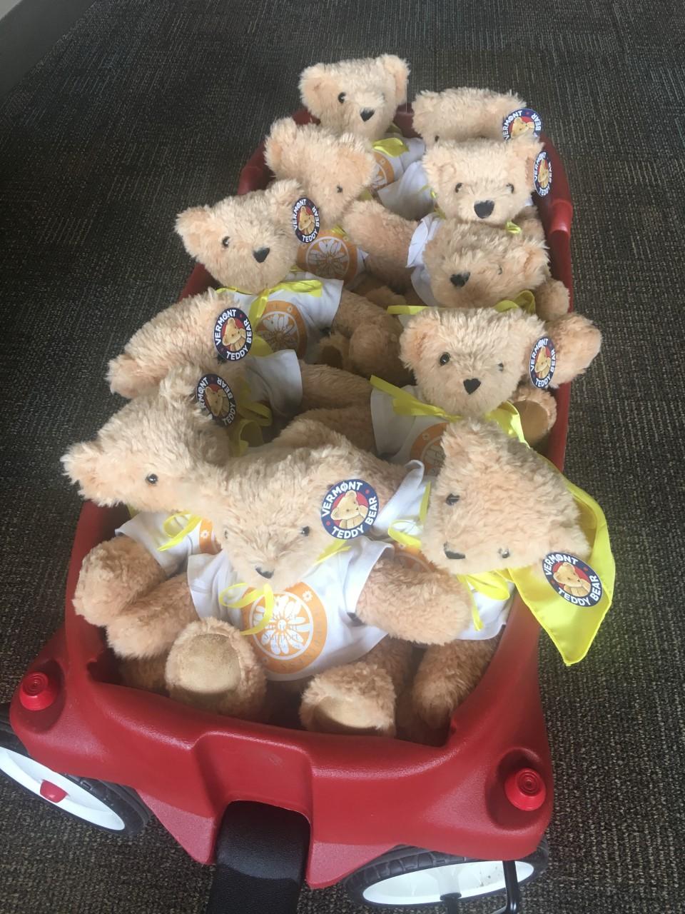 Teddy bear_1558650889704.jpg.jpg